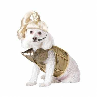 Honden carnavalpak popster