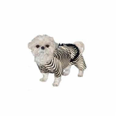 Zebra carnavalpak voor honden